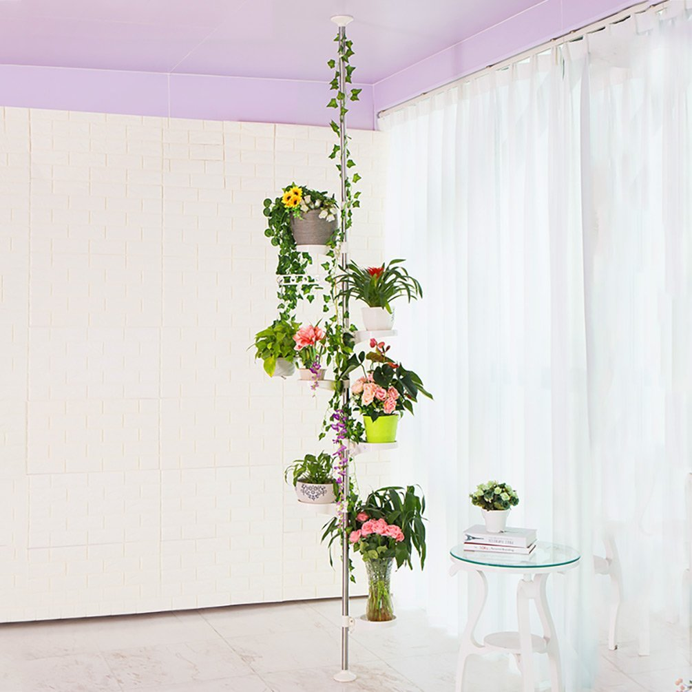 como hacer plantas colgantes de exterior resistentes