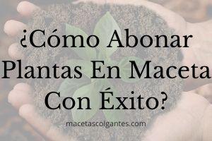 ▷ ¿Cómo abonar Plantas en Maceta? 🥇【GUIA FÁCIL 2021】